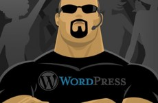 How to ward off hackers from your wordpress installation