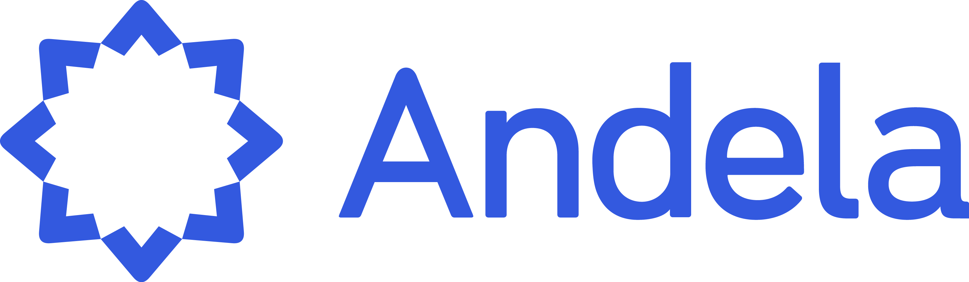 andela fellowship